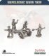 10mm Napoleonic Wars (1809): Duchy of Warsaw 7in Howitzers (with foot crew)