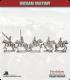 10mm Indian Mutiny: Mutineers - Bengal Light Cavalry in Company Dress