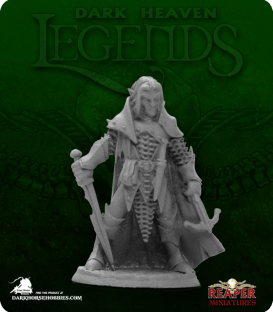 Dark Heaven Legends: Dark Elf Male Warrior