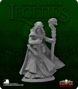 Dark Heaven Legends: Dark Elf Male Wizard