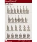 10mm Fantasy High Elves: Assorted Warriors
