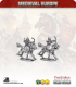 10mm Medieval (Eastern European): Light Cavalry