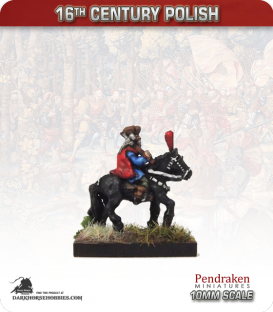 10mm 16th C. Polish: Mounted General