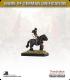10mm Europe (1860's): Austrian - Mounted Generals