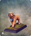 Warlord: Crusaders - Garr, War Dog (painted by Anne Foerster)