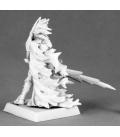 Warlord: Darkreach - Avrix Dirthe, Dark Elf Champion
