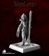 Warlord: Darkreach - Dhalea Duormidhaz, Dark Elf Wizard