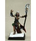 Warlord: Darkreach - Nanuranidd, Dark Elf Sorcerer (painted by Martin Jones)