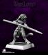 Warlord: Nefsokar - Chosen of Sekhmet